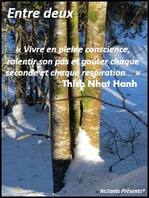 Vivre en pleine conscience